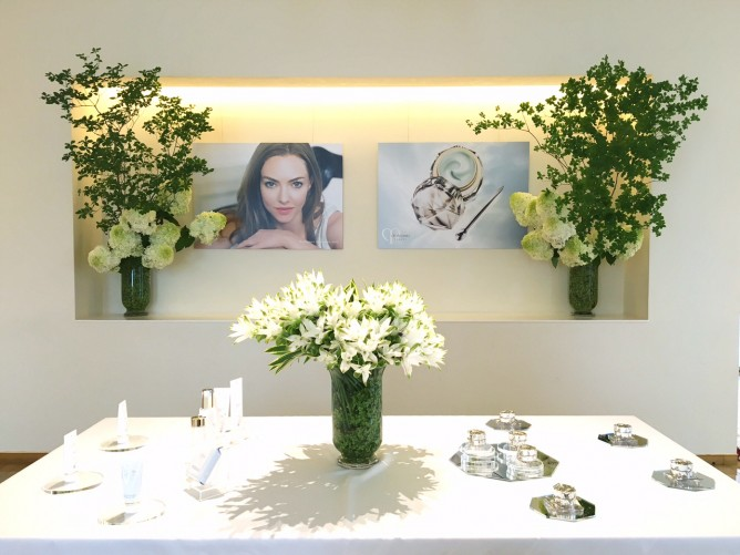 壁面:ドウダンツツジ 水無月 アナベル  テーブル上:クルクマ カラー(クリスタルブッシュ) アナベル