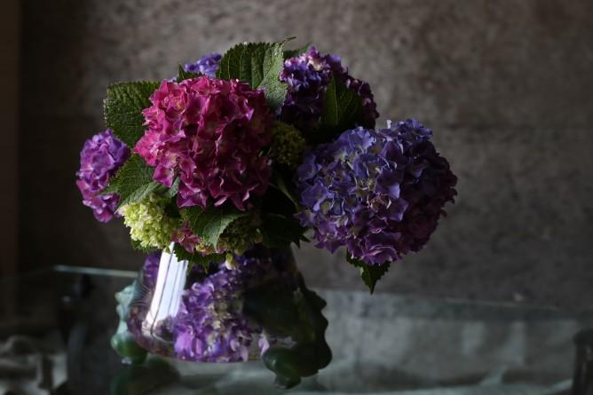 垂見圭竹・書籍掲載花の写真1