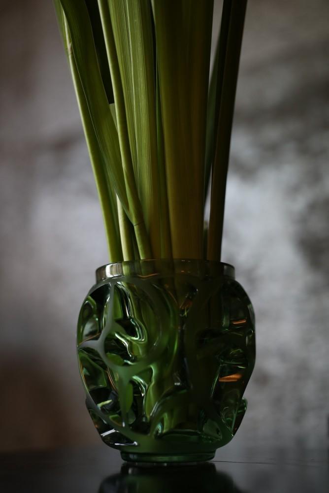 垂見圭竹・書籍掲載花の写真2